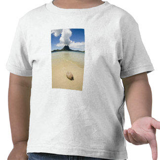 Visit to small picnic island in lagoon at Bora 2 T-shirts