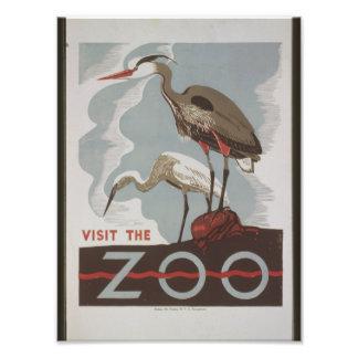 Visita del vintage el parque zoológico impresion fotografica
