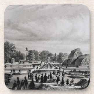 Visitantes que ven la casa de palma en el palacio posavasos de bebida