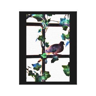 Visiting Dove Canvas Print