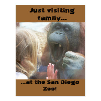 Visiting Family at the San Diego Zoo Postcard