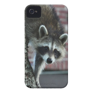 Visitor iPhone 4 Cases