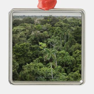 Vista aérea de la selva tropical del Amazonas Adorno Navideño Cuadrado De Metal