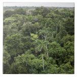Vista aérea de la selva tropical del Amazonas Azulejo Cuadrado Grande