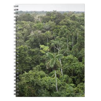 Vista aérea de la selva tropical del Amazonas Libro De Apuntes