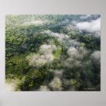 Vista aérea de la selva tropical, Panamá Impresiones