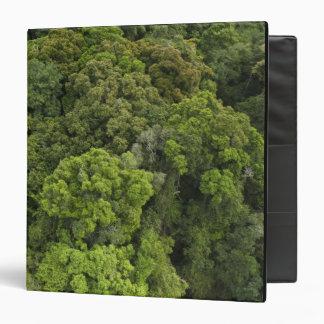 """Vista aérea de la selva tropical. Reserva de Carpeta 1 1/2"""""""