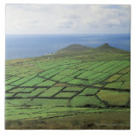 vista aérea de las tierras de labrantío por el mar azulejo cuadrado grande