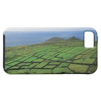 vista aérea de las tierras de labrantío por el mar iPhone 5 coberturas