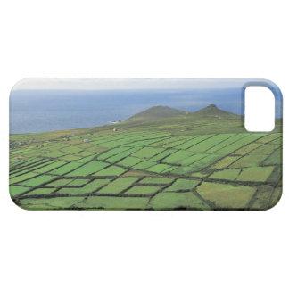 vista aérea de las tierras de labrantío por el mar iPhone 5 protector