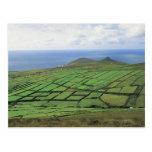 vista aérea de las tierras de labrantío por el mar tarjetas postales