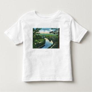Vista aérea del Chemung River Valley Camisas