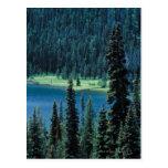 Vista aérea del parque nacional magnífico de Teton Tarjeta Postal
