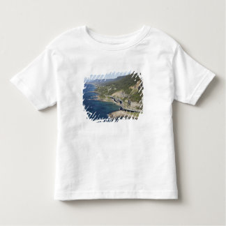 Vista aérea del puente del acantilado del mar playera de niño