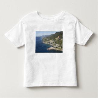 Vista aérea del puente del acantilado del mar playeras