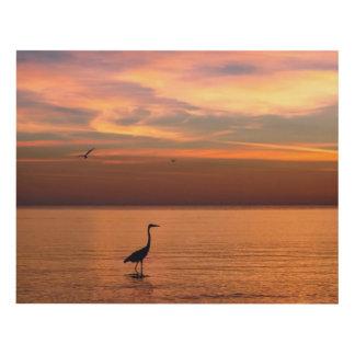 Vista al mar en la puesta del sol cuadro