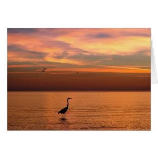 Vista al mar en la puesta del sol felicitacion