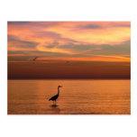 Vista al mar en la puesta del sol tarjetas postales