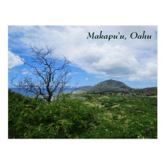 Vista al mar escénica de las montañas de Makapuʻu Tarjetas Postales