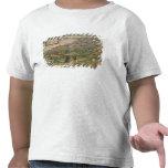 Vista de Granada Camisetas