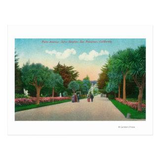 Vista de la avenida de la palma en las alturas de tarjeta postal