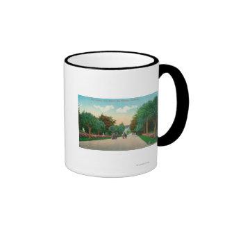 Vista de la avenida de la palma en las alturas de taza de dos colores