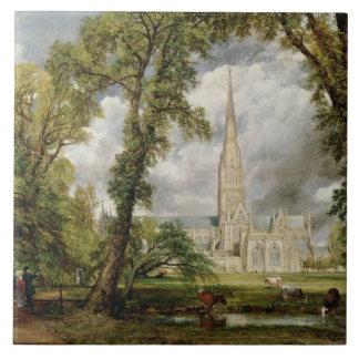 Vista de la catedral de Salisbury de Grou del obis Azulejo Cuadrado Grande