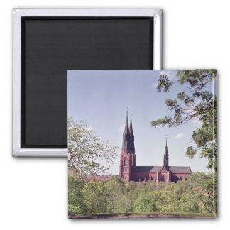 Vista de la catedral de Uppsala del castillo Imán Cuadrado