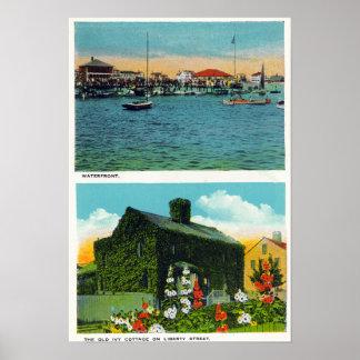 Vista de la costa, cabaña vieja de la hiedra en li póster