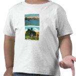 Vista de la costa, cabaña vieja de la hiedra en camisetas