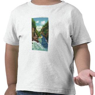 Vista de la garganta de la cala de la caída camiseta
