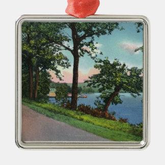 Vista de la impulsión de la orilla del lago a lo l ornamento de navidad