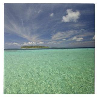 Vista de la isla de Funadoo de Funadovilligilli 2 Azulejo Cuadrado Grande