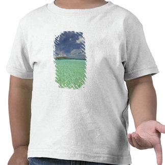 Vista de la isla de Funadoo de Funadovilligilli 2 Camisetas