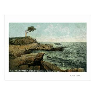 Vista de la isla de los picos y del árbol de los tarjeta postal