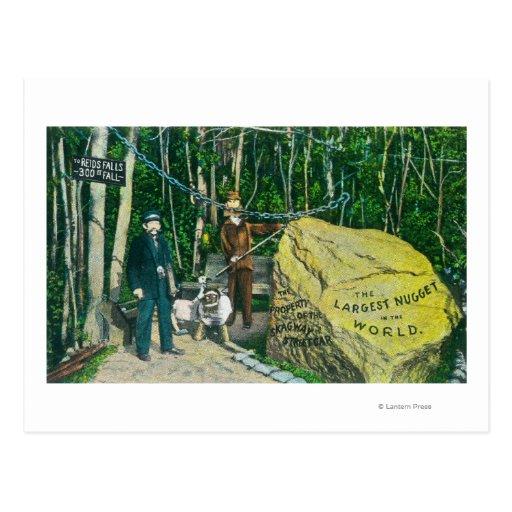 Vista de la pepita de oro más grande del mundo tarjeta postal