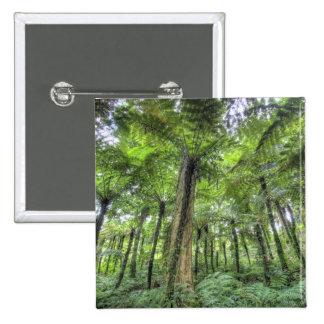 Vista de la vegetación en los jardines botánicos d pins