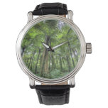 Vista de la vegetación en los jardines botánicos relojes de mano