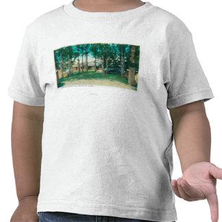 Vista de las caídas turísticas municipales de Idah Camiseta