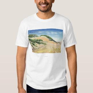 Vista de las dunas de arena de Cape Cod Playera