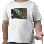 Vista de las montañas rocosas camisetas