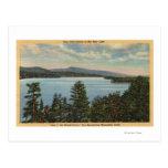 Vista de las orillas revestidas del pino del lago postales