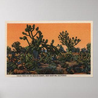 Vista de los árboles de la yuca en el desierto del impresiones