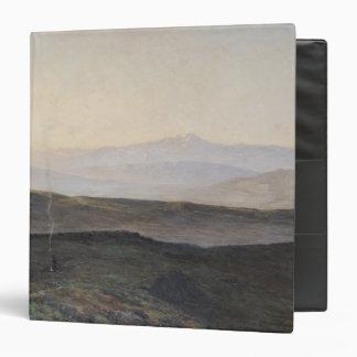 Vista de los Pirineos de la plaga