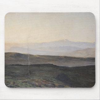 Vista de los Pirineos de la plaga Tapete De Raton