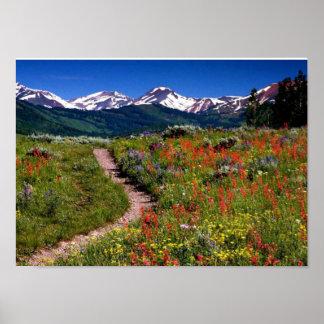 Vista de montañas y de flores para el amante de na póster
