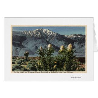 Vista de Mt. San Jacinto, yuca Mohavensis Felicitaciones