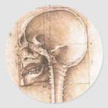 Vista de un cráneo de Leonardo da Vinci C. 1489 Etiquetas Redondas