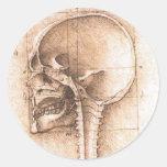 Vista de un cráneo de Leonardo da Vinci C. 1489 Pegatina Redonda