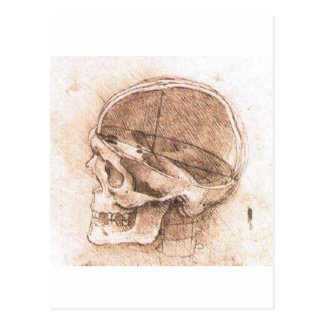 Vista de un cráneo de Leonardo da Vinci circa 1489 Tarjeta Postal